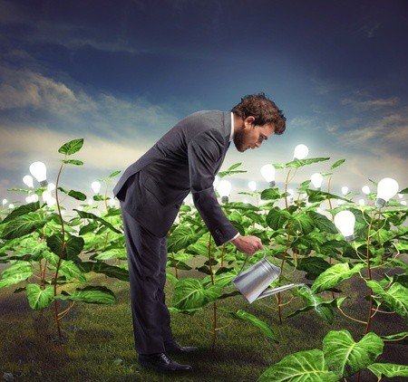 Lead Nurturing: 5 Steps to an Effective Campaign